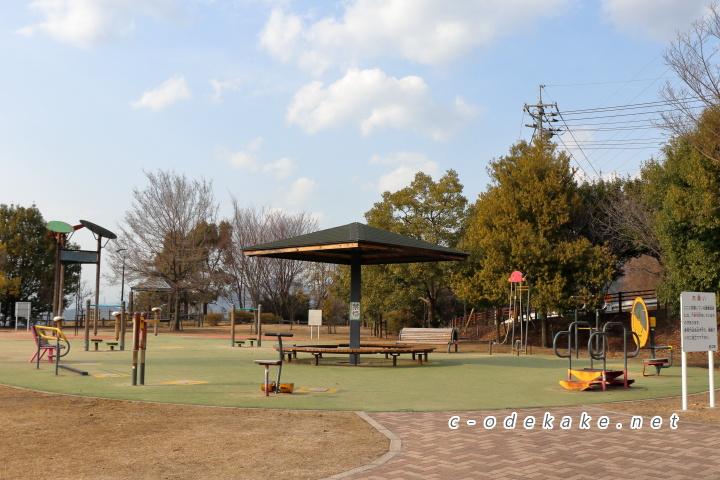 揚倉山健康運動公園健康遊具
