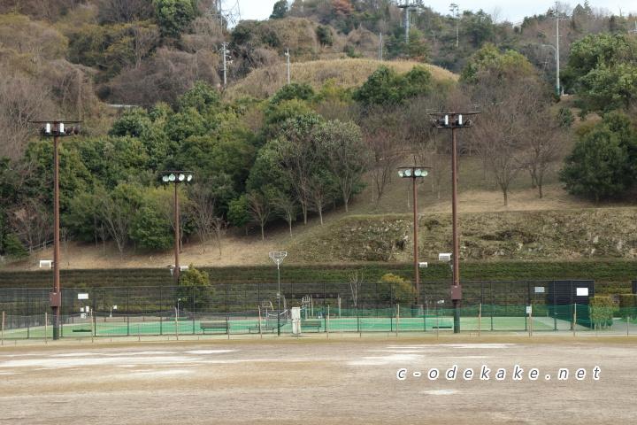 揚倉山健康運動公園の人工芝テニスコート