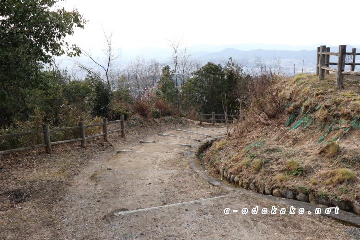 揚倉山健康運動公園散策の森