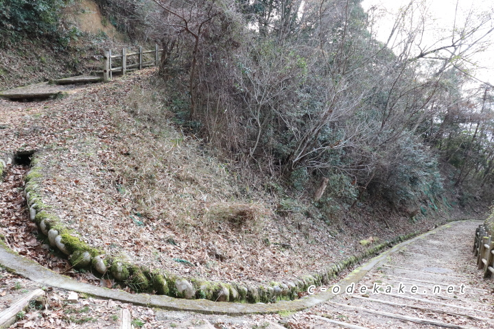 揚倉山健康運動公園散策の森カーブ