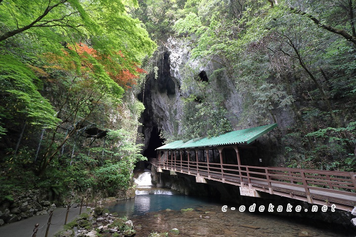 秋芳洞内への入口