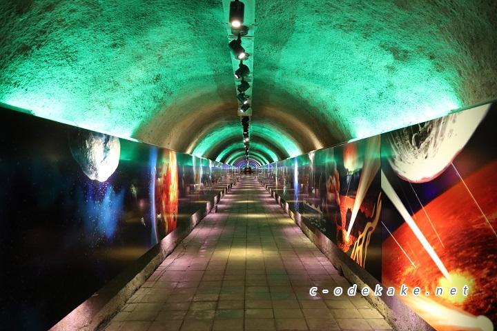 3億年のタイムトンネル