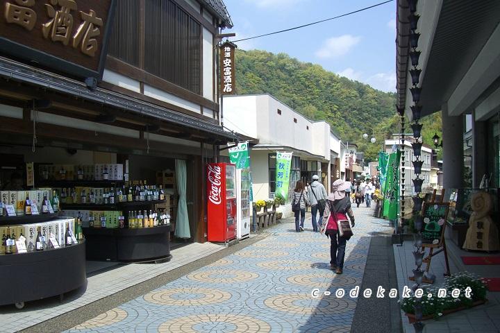 秋芳洞へ続く商店街
