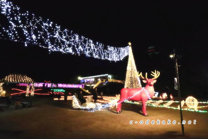 広島市植物公園(イルミネーション)