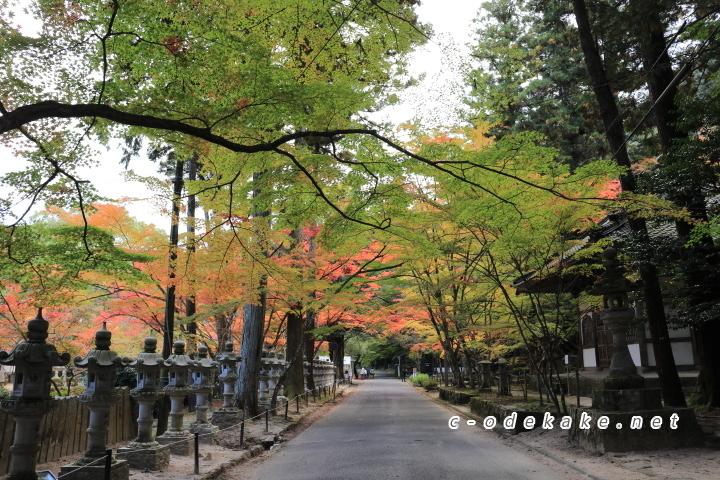 佛通寺の山門の前の道路