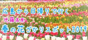 春の花ざかりスポット