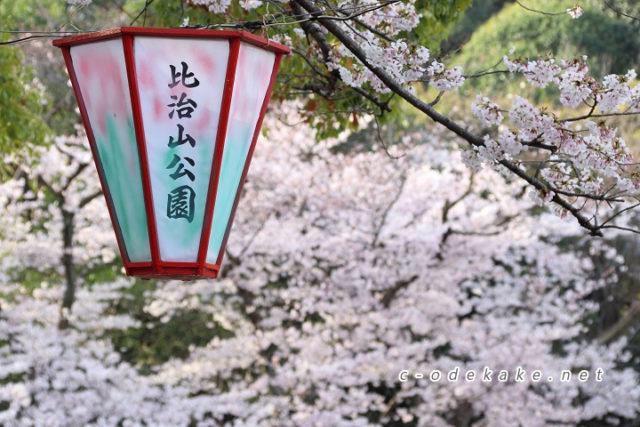 比治山公園-お花見ガイド