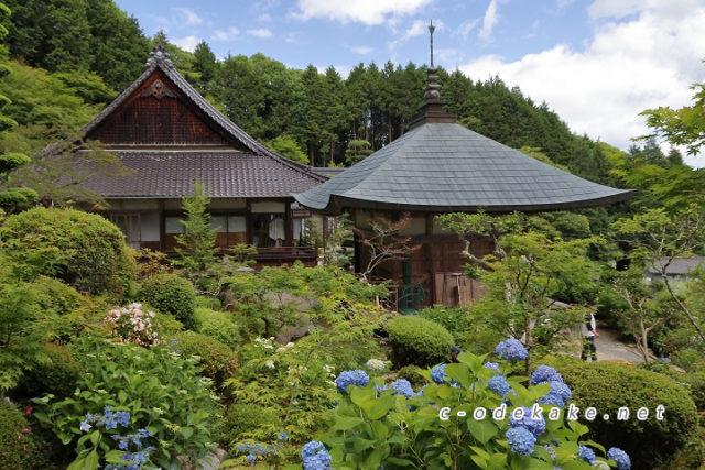 康徳寺-世羅のあじさい寺