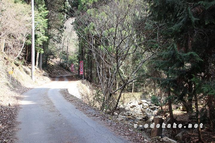 ミツマタ群生地に至る山道