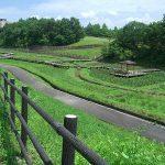 広島県立みよし公園
