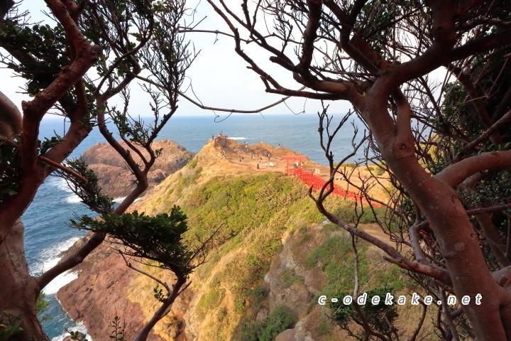 元乃隅神社の鳥居の隙間からの眺め