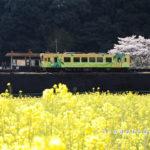 錦川清流線-南河内駅
