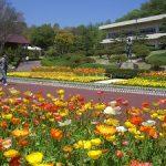 広島市植物公園