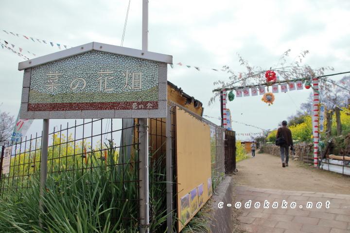 菜の花畑入口