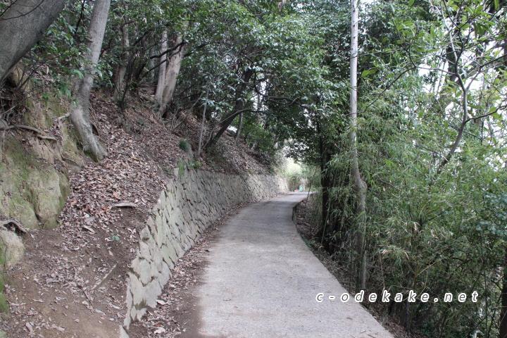 田尻町の小道