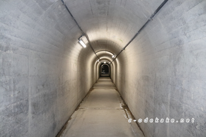 石見畳ヶ浦のトンネル