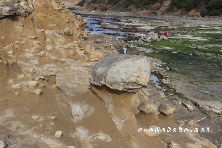 石見畳ヶ浦きのこ岩