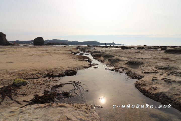 石見畳ヶ浦岩場