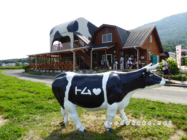トムミルクファームで遊んできました-新鮮ミルクのジェラート ...