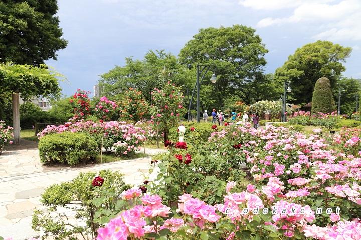 牛田総合公園バラ園