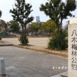 八木梅林公園