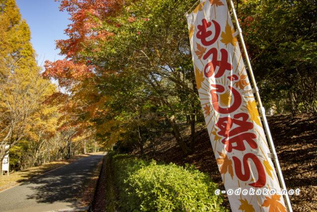 ひろしま遊学の森(紅葉編)